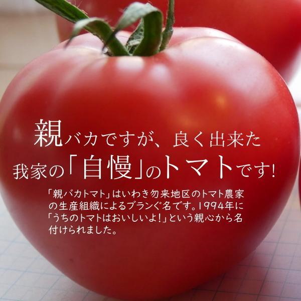 親バカトマト・ミニトマト・トマトジュースの詰合わせ 約2kg いわき市産 suketoma 09