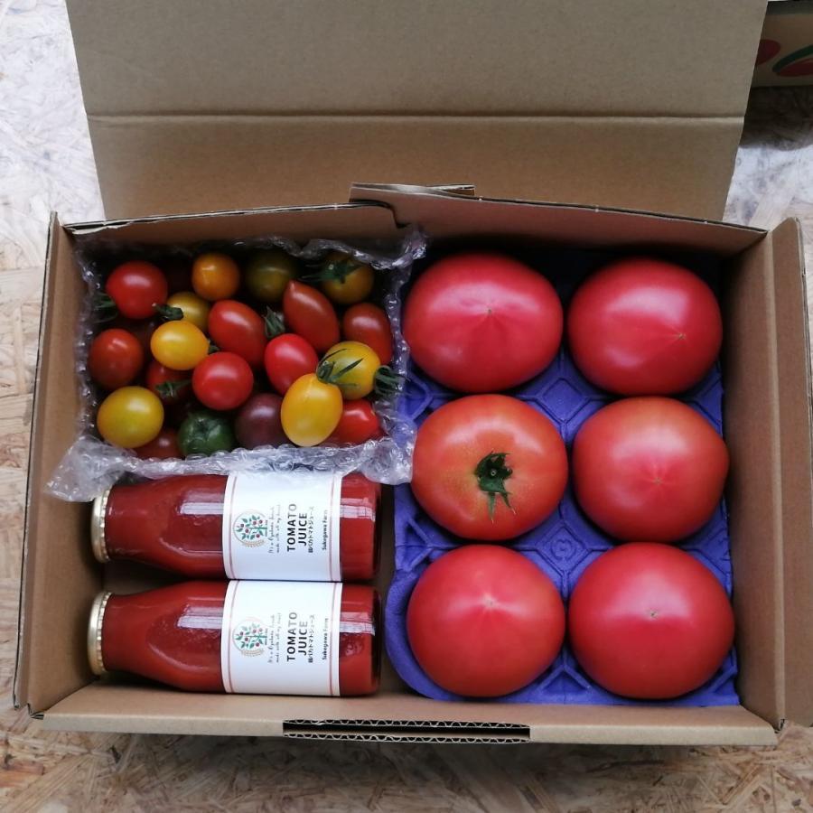 親バカトマト・ミニトマト・トマトジュースの詰合わせ 約2kg いわき市産 suketoma 05