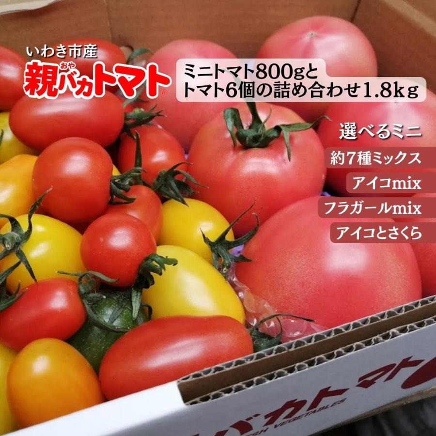 親バカトマト6個とミニトマト900gの詰め合わせ 約2kg いわき市産 選べるミニ|suketoma