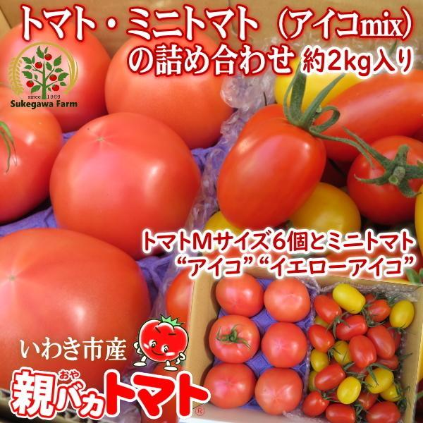 親バカトマト6個とミニトマト900gの詰め合わせ 約2kg いわき市産 選べるミニ|suketoma|16