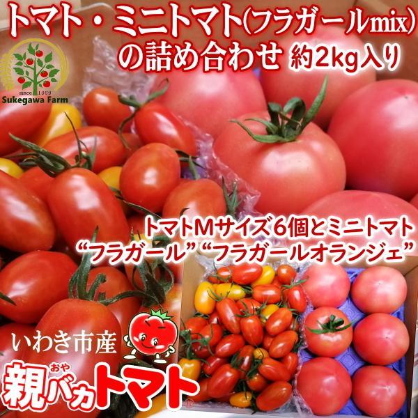 親バカトマト6個とミニトマト900gの詰め合わせ 約2kg いわき市産 選べるミニ|suketoma|17
