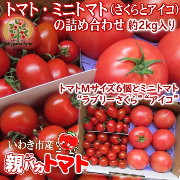 親バカトマト6個とミニトマト900gの詰め合わせ 約2kg いわき市産 選べるミニ|suketoma|18