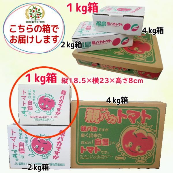 アイコミックス1.2kg入り 親バカトマトのミニトマト いわき市産  suketoma 10