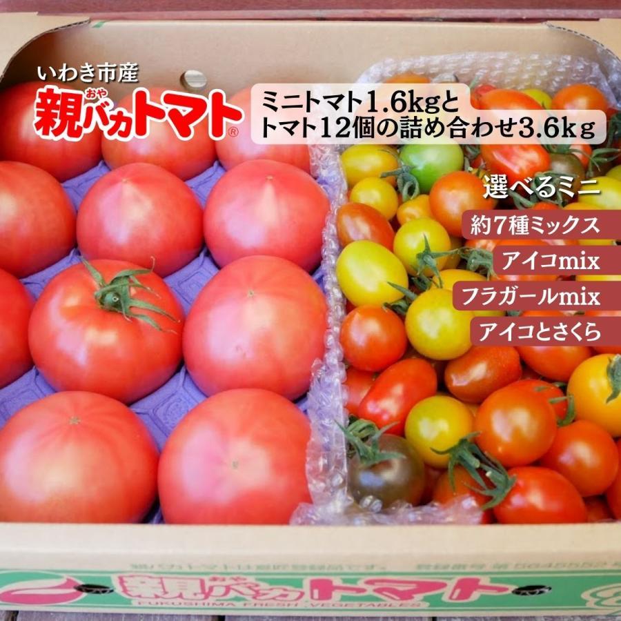 親バカトマトとミニトマトの詰め合わせ 約4kg いわき市産 選べるミニ suketoma