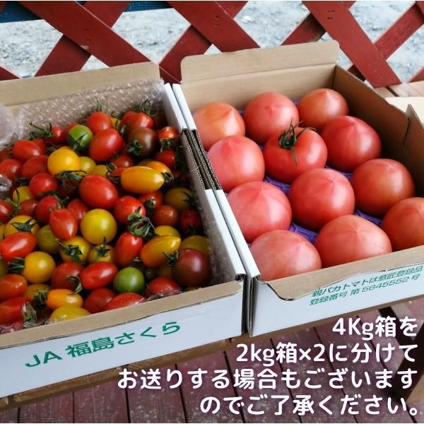 親バカトマトとミニトマトの詰め合わせ 約4kg いわき市産 選べるミニ suketoma 02