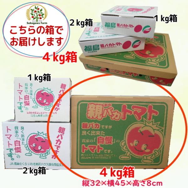 親バカトマトとミニトマトの詰め合わせ 約4kg いわき市産 選べるミニ suketoma 17