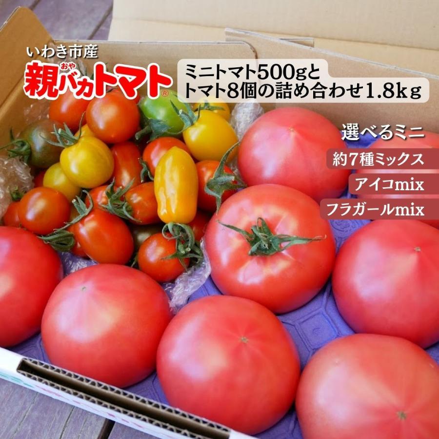 【新商品】親バカトマト8個とミニトマト500gの詰め合わせ 約2kg いわき市産 選べるミニ suketoma