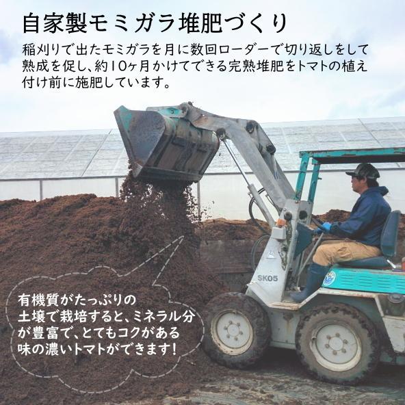 【新商品】親バカトマト8個とミニトマト500gの詰め合わせ 約2kg いわき市産 選べるミニ suketoma 14