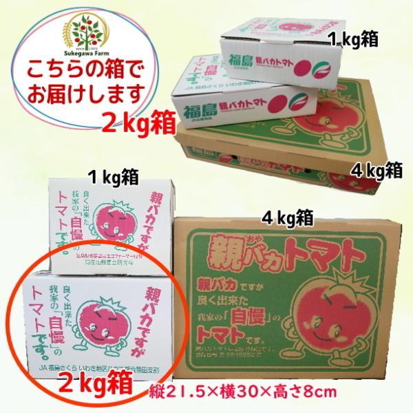 【新商品】親バカトマト8個とミニトマト500gの詰め合わせ 約2kg いわき市産 選べるミニ suketoma 15