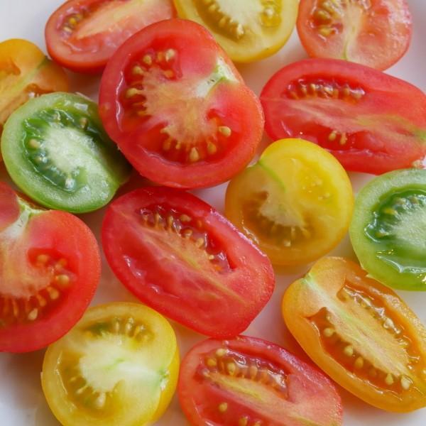 親バカトマトのミニトマト250g×6袋詰 おまかせセット 1.5kg入り  いわき市産|suketoma|03