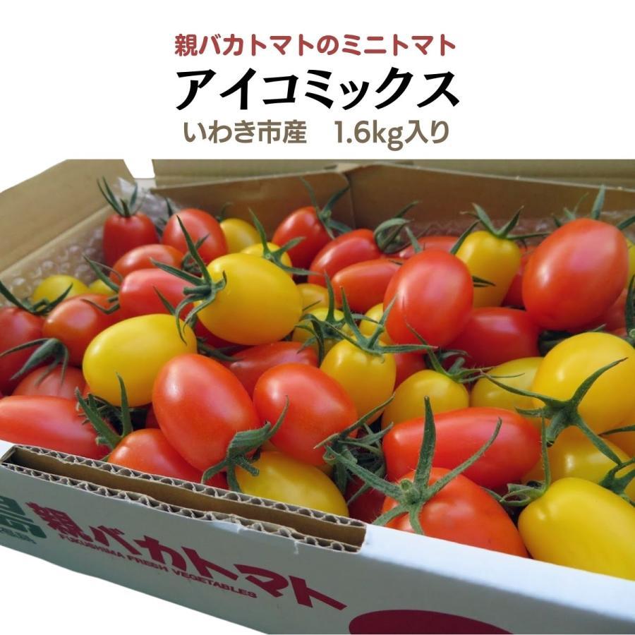 アイコミックス1.8kg入り 親バカトマトのミニトマト いわき市産  suketoma