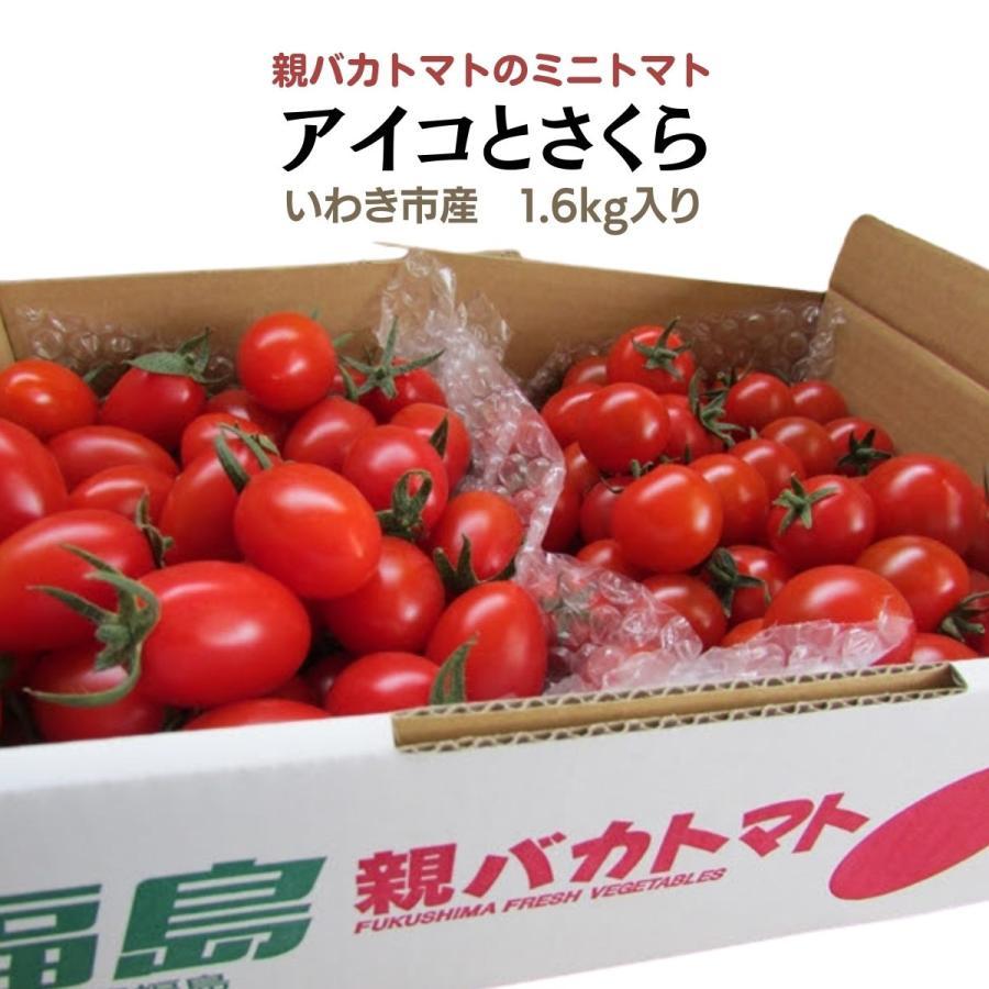 アイコとさくら1.8kg入り 親バカトマトのミニトマト いわき市産  suketoma