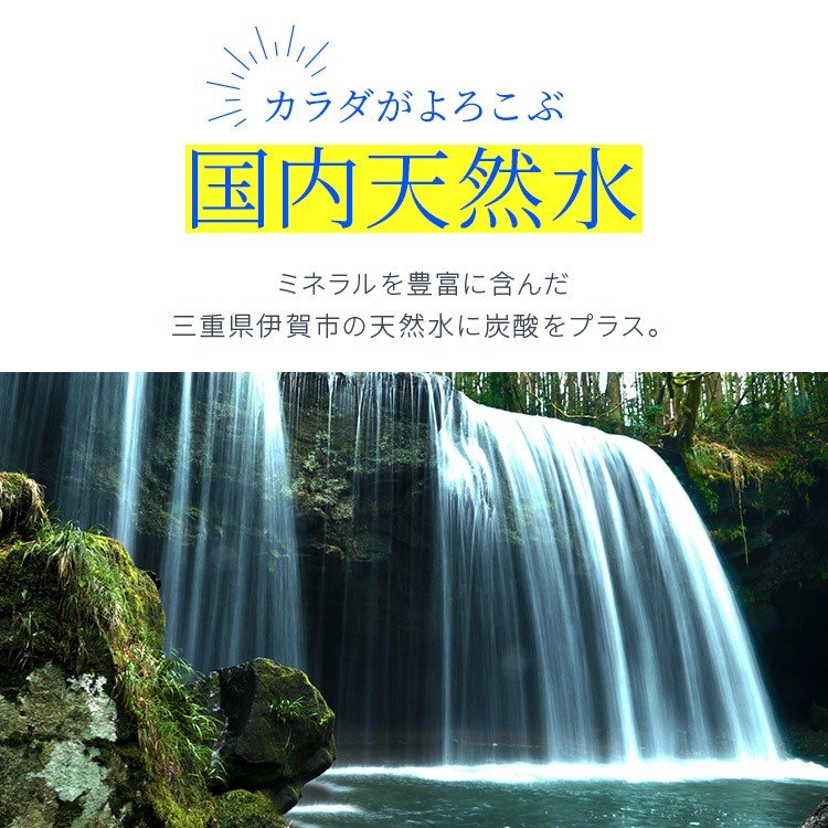 炭酸水 強炭酸 500ml 24本 天然水 水 国産 まとめ買い ペットボトル アイリスの天然水 強炭酸水500ml アイリスオーヤマ (D) 代引不可|sukusuku|09