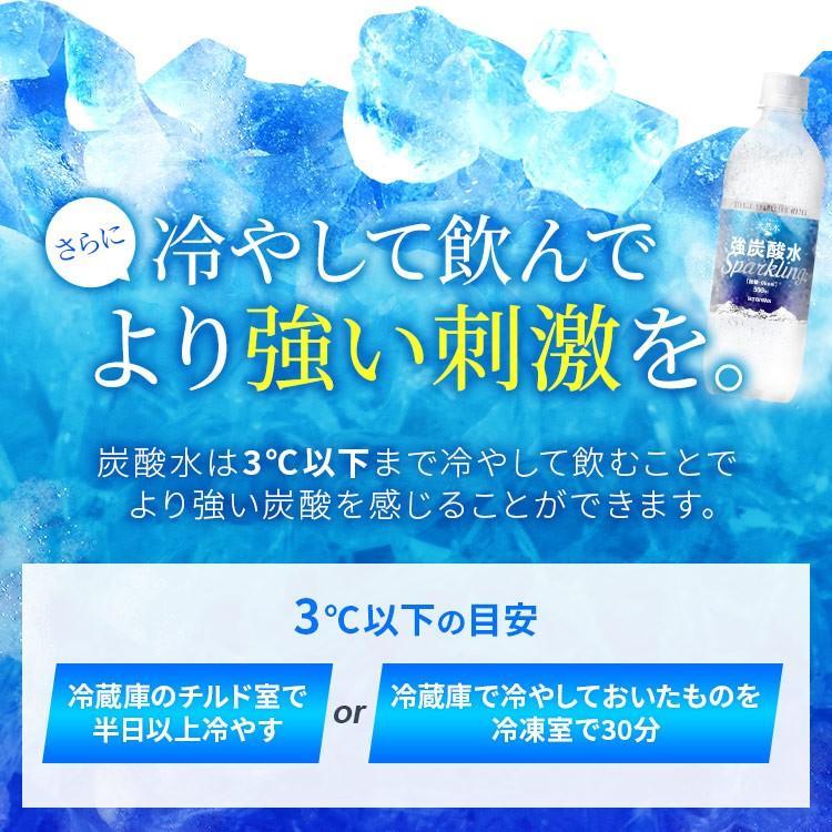 炭酸水 強炭酸 500ml 48本 天然水 水 国産 まとめ買い ペットボトル 飲料 アイリスの天然水 強炭酸水500ml アイリスオーヤマ (D) 代引不可|sukusuku|07