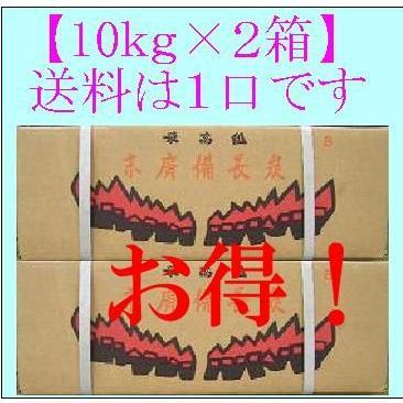 (10kg×2箱)で1口 大鋸炭 B (10kg) 中国産 四角形|sumi-888