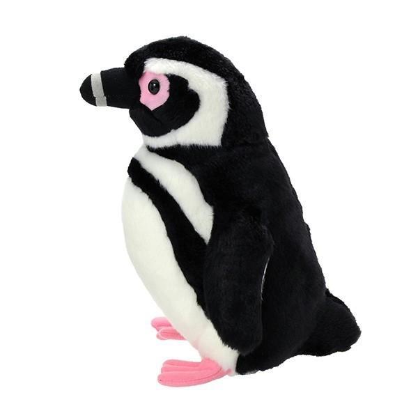 すみだ水族館 オリジナル 飼育員監修 マゼランペンギン ぬいぐるみ Mサイズ sumida-aquarium 03