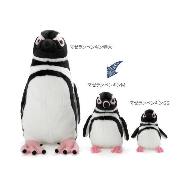 すみだ水族館 オリジナル 飼育員監修 マゼランペンギン ぬいぐるみ Mサイズ sumida-aquarium 04