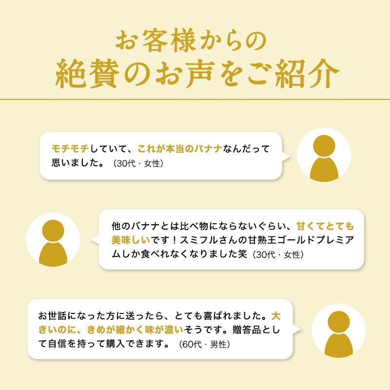 バナナ 甘熟王ゴールドプレミアム 9~10パック スミフル 最高級 sumifru 10