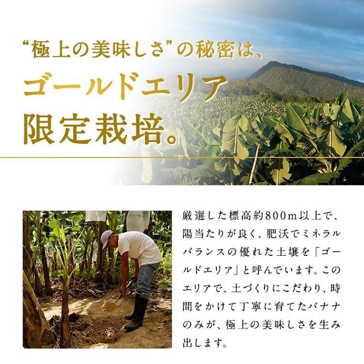バナナ 甘熟王ゴールドプレミアム 9~10パック スミフル 最高級 sumifru 07