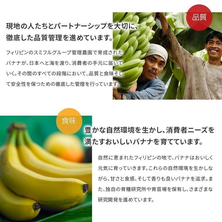 バナナ 業務用 訳あり 甘熟王 約15kg 約85本 フィリピン産 スミフル|sumifru|13