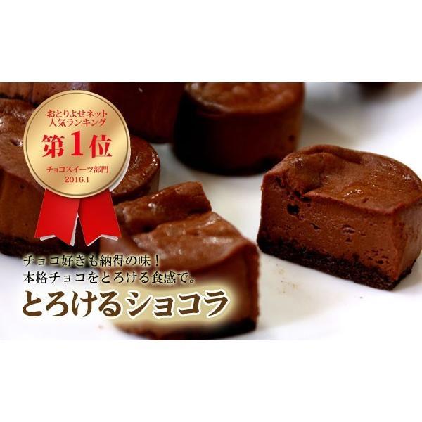御歳暮 お歳暮 バースデー プレゼント 誕生日 チョコレート チョコ プレゼント お菓子 手土産 ギフト スイーツ グルメ チーズケーキ 洋菓子 10個|sumiyosiya|03