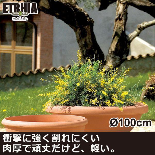 Euro 3 Plast Etrhia Giottus ユーロスリープラスト エトリア プランター ジオッタス100 ER-2143