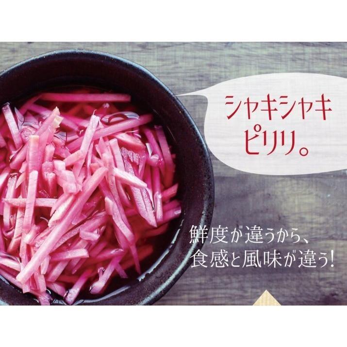 紅しょうが ( 国産 ) 50g×4袋 九州産 生姜 セール お取り寄せ グルメ 合成着色料不使用 ゆうパケット(出荷目安:注文後1〜2週間)|sunao-syokudou|04