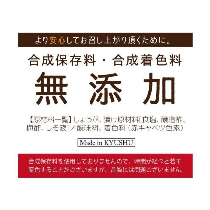 紅しょうが ( 国産 ) 50g×4袋 九州産 生姜 セール お取り寄せ グルメ 合成着色料不使用 ゆうパケット(出荷目安:注文後1〜2週間)|sunao-syokudou|07
