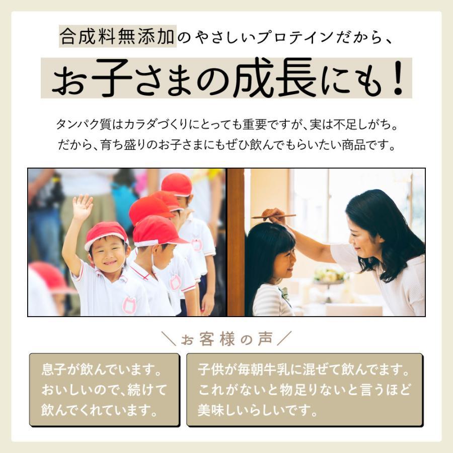 プロテイン 大豆たんぱく質 ソイプロテイン 九州アミノシェイク 1袋 (抹茶きな粉 / カカオ味/コーヒー味) (出荷目安:注文後1〜2週間)|sunao-syokudou|06