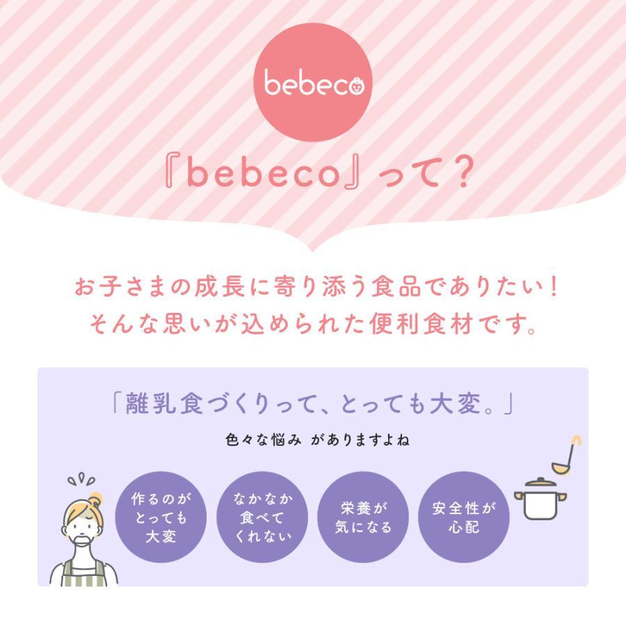 九州産 まるごと鶏レバー 40g×1袋 無添加 粉末 パウダー 離乳食 鉄分 送料無料 (出荷目安:注文後1〜2週間程度)|sunao-syokudou|08