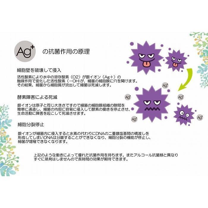 【送料無料】アールケー銀イオン抗菌スプレー 5本セット ノンアルコール 無添加 合成香料無配合 無着色 ウイルス対策 日本製|sunfield555|08