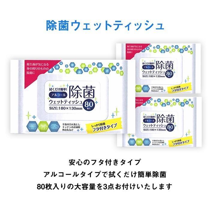 ウイルス対策 9点セット マスク 除菌 抗菌 アイテム ウェットシート スプレー 送料無料|sunfield555|03