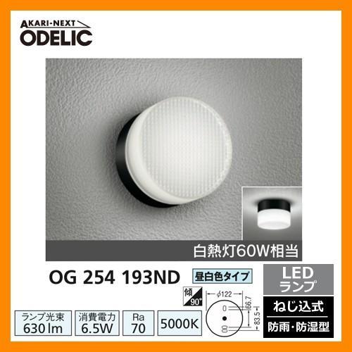 LED 照明 LED ポーチライト OG 254 193ND LEDライト 外灯 屋外 門灯 ODELIC オーデリック 送料無料