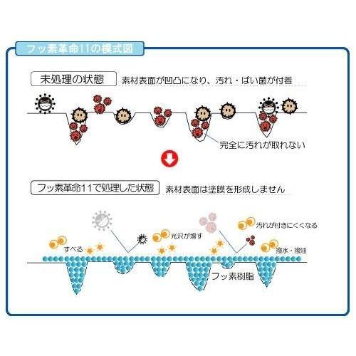 フッ素革命11 Light 200ml(スポンジ&ファイバークロス付)