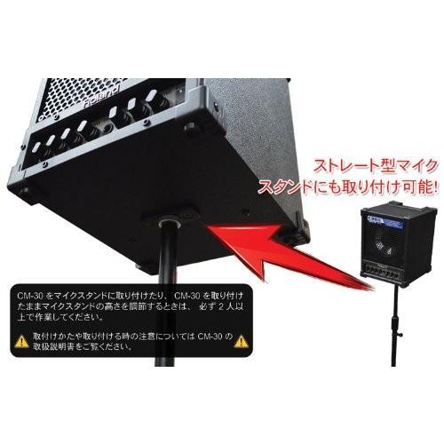 Roland 出力30Wスピーカー 簡易PAセット (有線マイク2本構成) 各種スタンド付き
