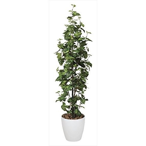 《アートグリーン》《人工観葉植物》光触媒 光の楽園 シンゴニューム1.7