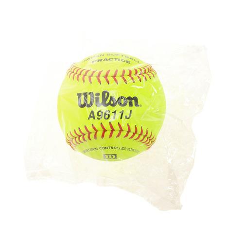 ウイルソン お見舞い 格安 WILLSON 革ソフトボール練習球 メンズ WTA9611J レディース