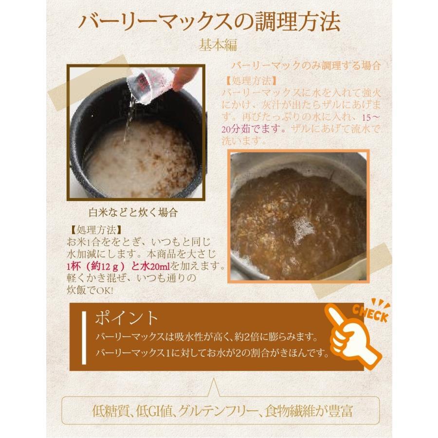 スーパー大麦 バーリーマックス 700g 食物繊維がもち麦の2倍 大麦 もち麦 玄麦 腸活 雑穀  糖質オフ 糖質制限 腸の奥まで届く 低糖質 水溶性 不溶性 supplemarche 10