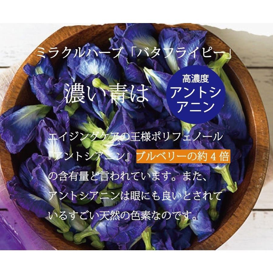 バタフライピー 青いお茶 お手軽ティーバッグ1g×20袋 500mlペットボトル約40本分 1杯約30円 送料無料 セール supplemarche 06