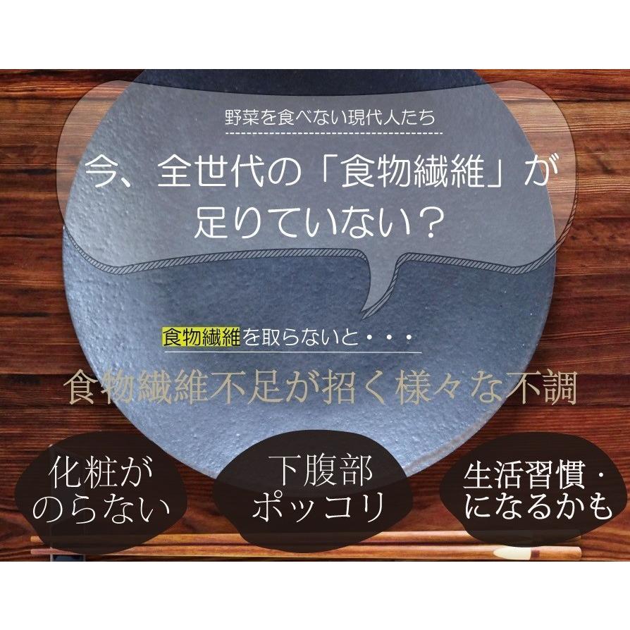 難消化性デキストリン400g(顆粒タイプ)乳酸菌プラス ダイエットファイバープレミアム 冷水でも簡単に溶ける【日本社製 国内充填 糖質制限 送料無料】食物繊維|supplemarche|08
