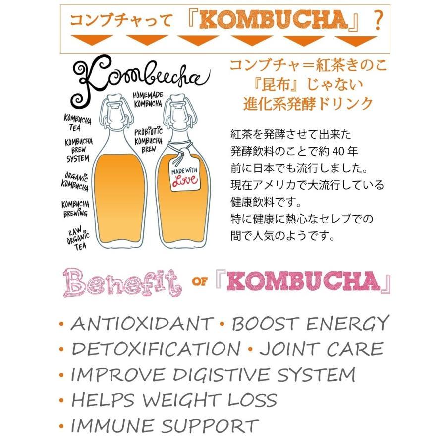 コンブチャ 液糖不使用 濃〜い コンブチャエンザイムドリンク 500ml  送料無料 クレンズライフ ダイエット コンブチャクレンズ kombucha supplemarche 05