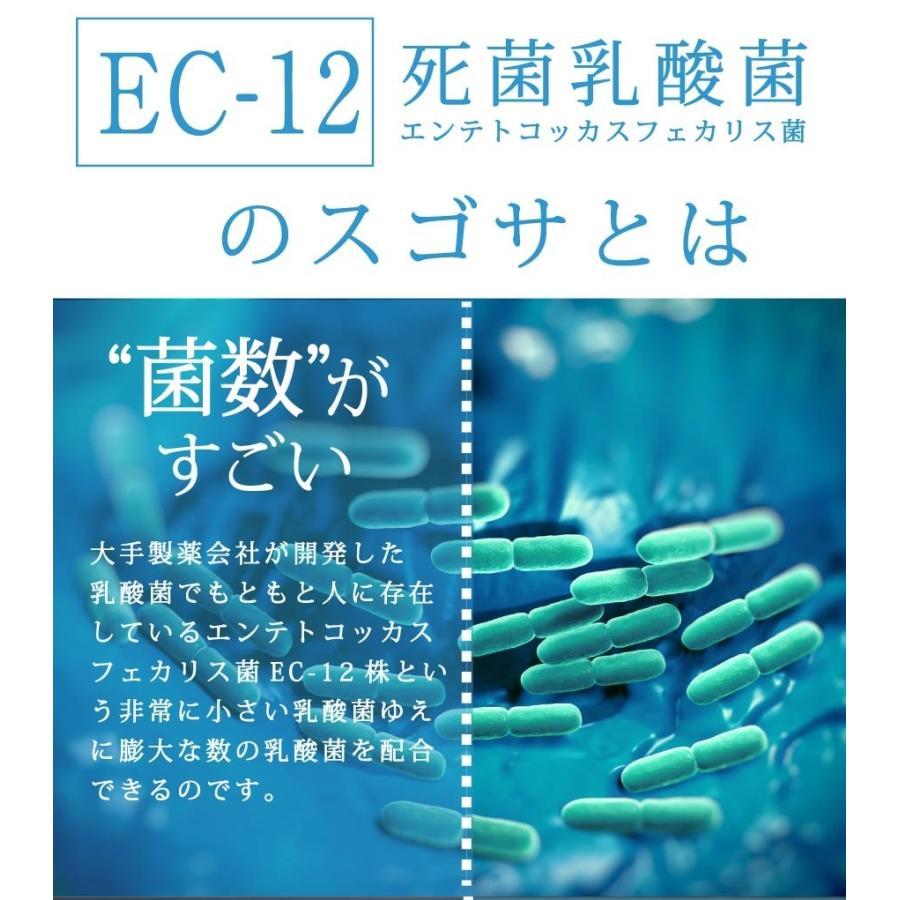 10兆個の乳酸菌 100g(100億個で100日分) EC-12 難消化性デキストリン オリゴ糖  プレーンタイプ 無着色 無香料 無保存料|supplemarche|05