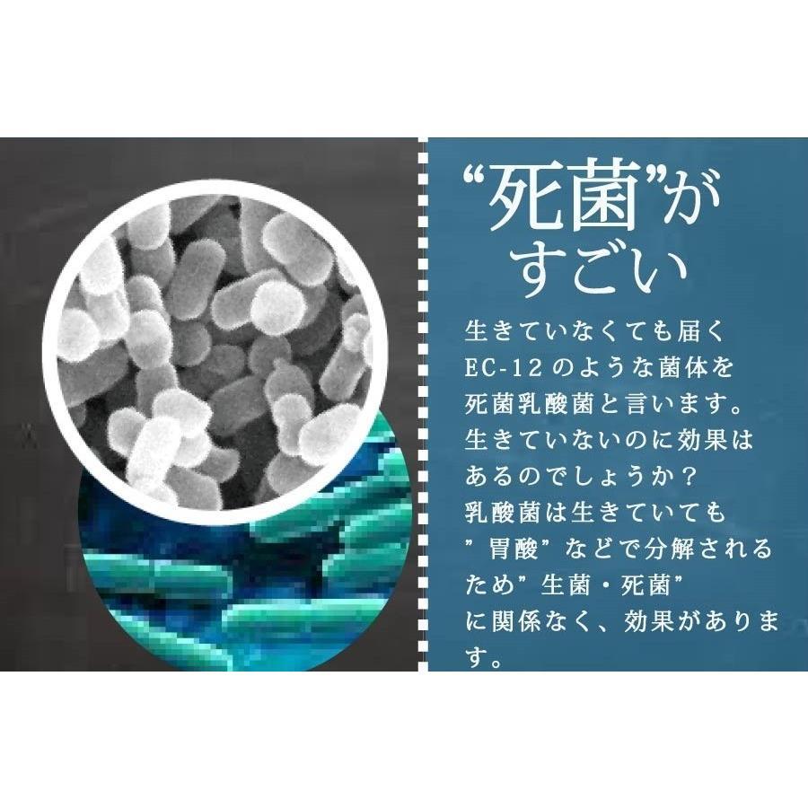 10兆個の乳酸菌 100g(100億個で100日分) EC-12 難消化性デキストリン オリゴ糖  プレーンタイプ 無着色 無香料 無保存料|supplemarche|06