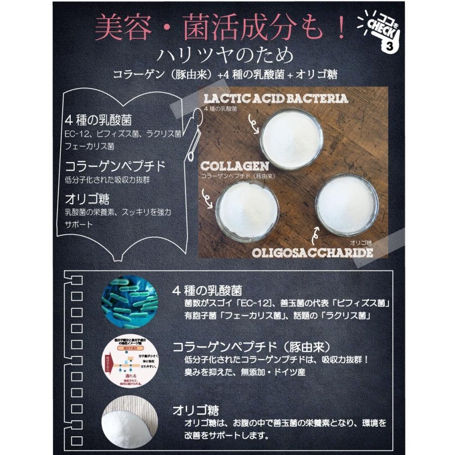 お徳用2個セット ボタニカル ソイプロテイン 300g(非遺伝子組替) 選べる9種類の味 7種のビタミン コラーゲン 乳酸菌 酵素パウダー|supplemarche|15