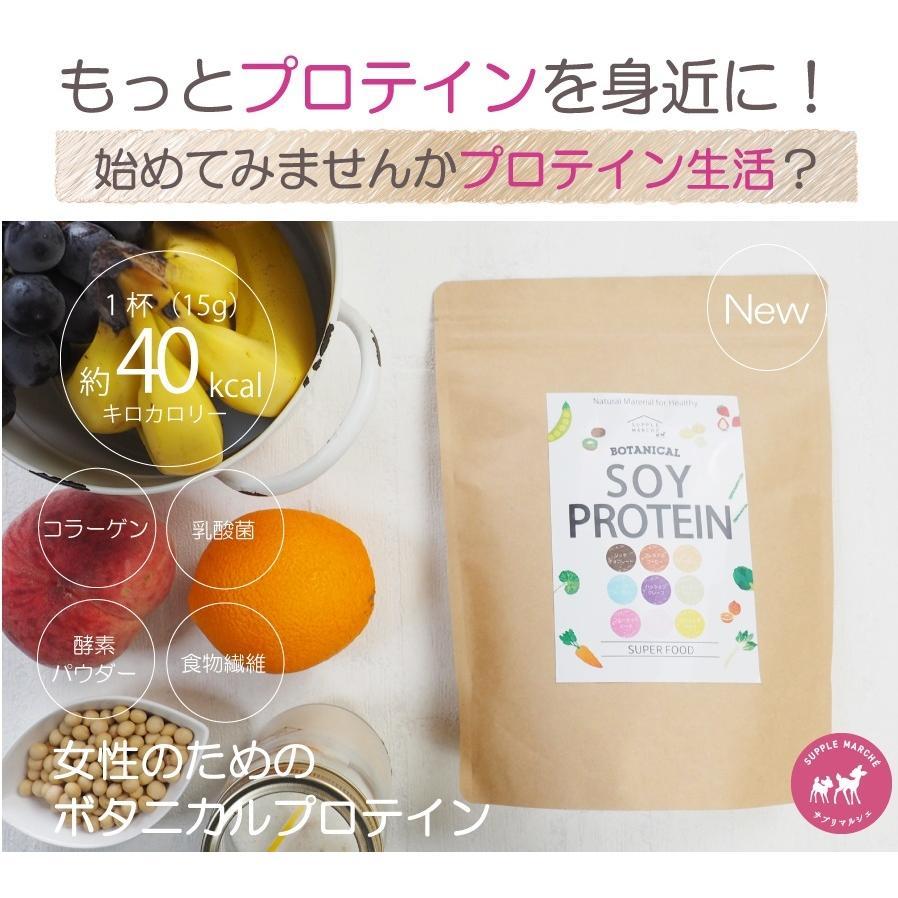 お徳用2個セット ボタニカル ソイプロテイン 300g(非遺伝子組替) 選べる9種類の味 7種のビタミン コラーゲン 乳酸菌 酵素パウダー|supplemarche|08