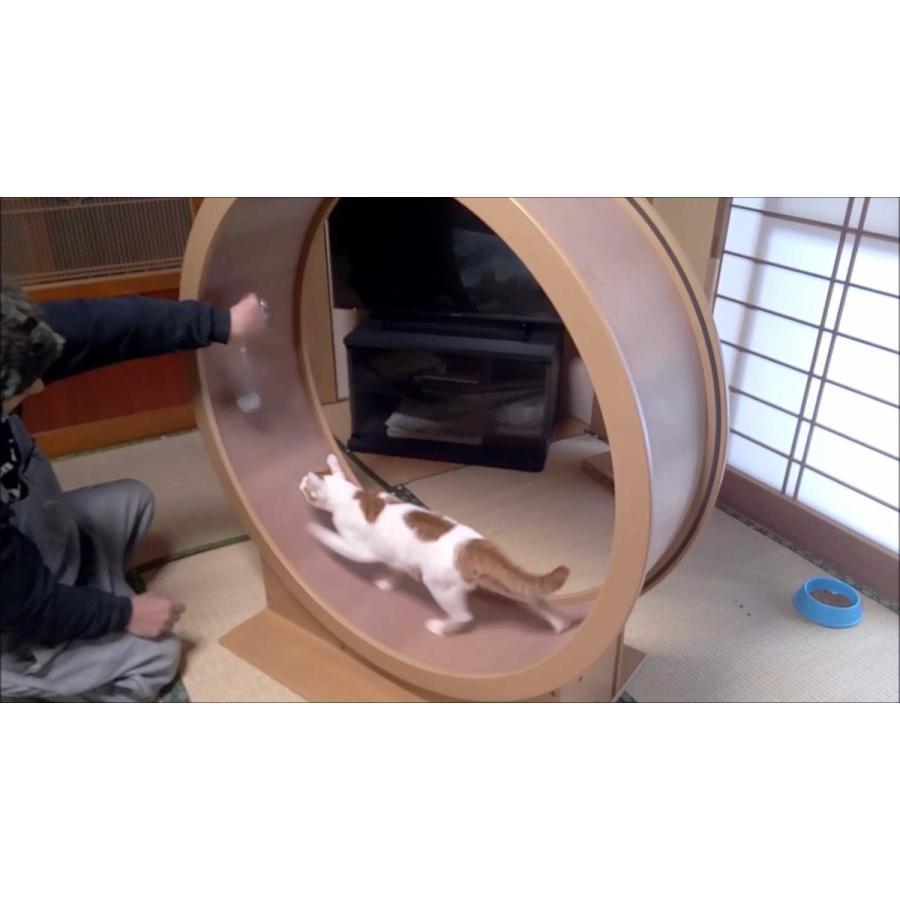 猫と遊んで運動不足解消! ねこクル 【受注生産】ねこ/ネコ/猫/回転/運動/CAT/肥満/WHEEL/室内/タワー|suwako-mall|03