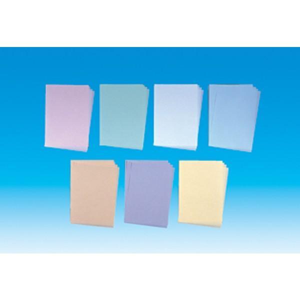 ニュースタクリン 無塵紙 ブルー B5 PPC用紙