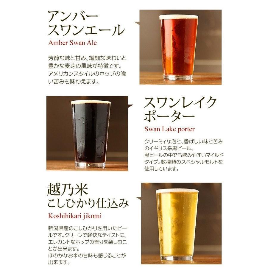 春ギフト クラフトビール ビール 地ビール  ギフト スワンレイクビール10本 豚ばらつるし 焼豚 セット 本州 送料無料 ご贈答用 包装熨斗 craft beer|swanlakebeer|06