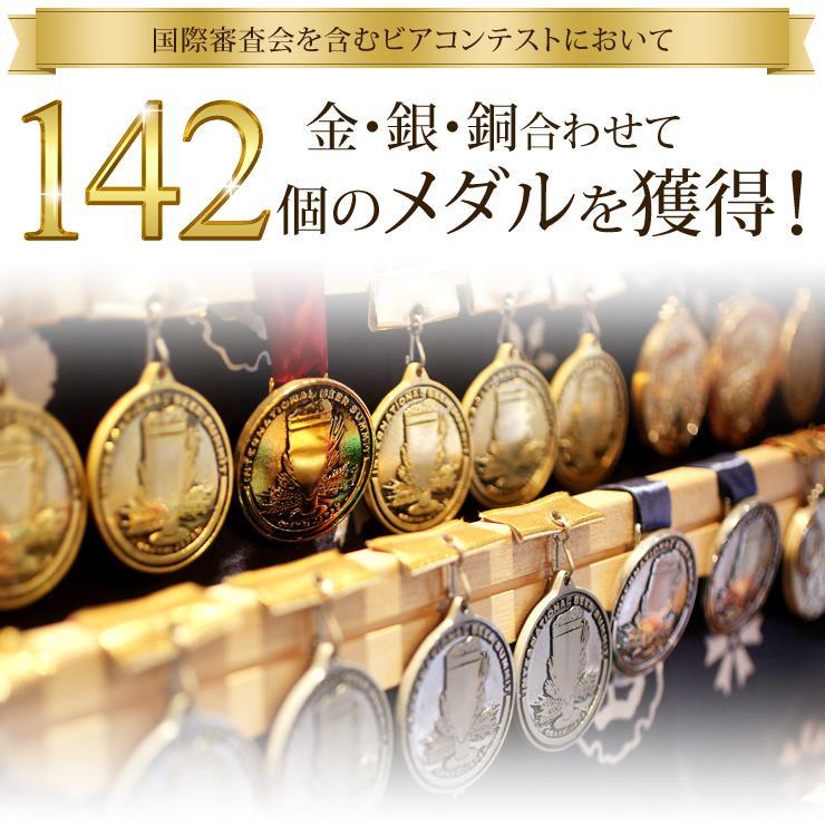 ビール クラフトビール 数量限定 ヘイジーサワー 3本セット|swanlakebeer|06