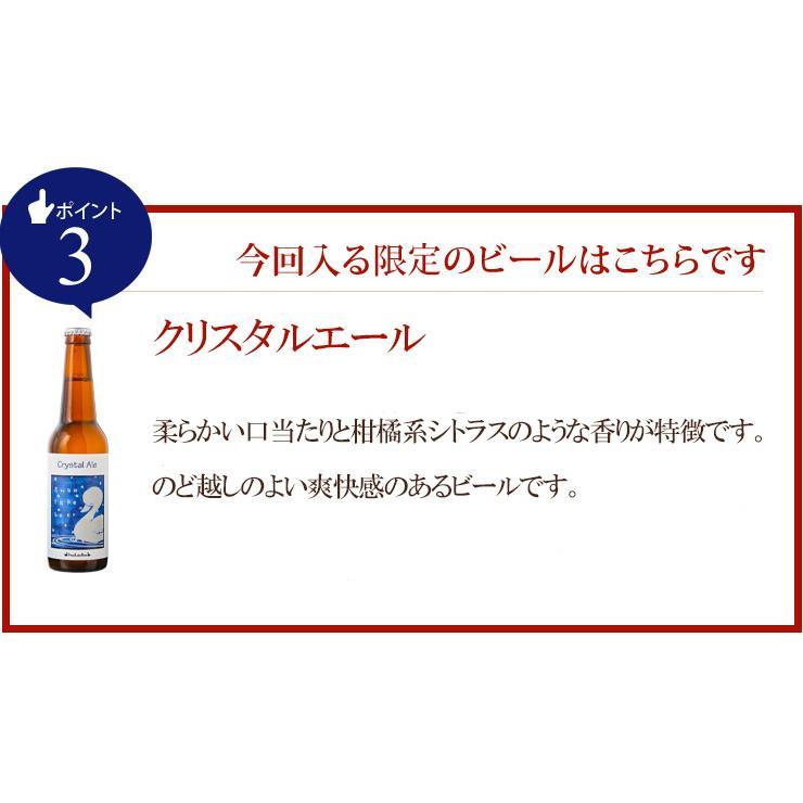 ビール クラフトビール 世界一受賞ビール飲み比べ 限定ビール入り 10本詰め合わせ 【新緑】 サンキューセット B-IPA ミエルブラン 地ビール 送料無料 swanlakebeer 04